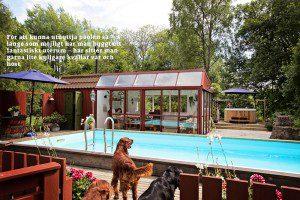 Badliv i trädgården pool