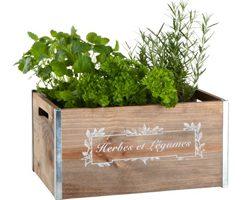 Hög trädgårdslåda med växter