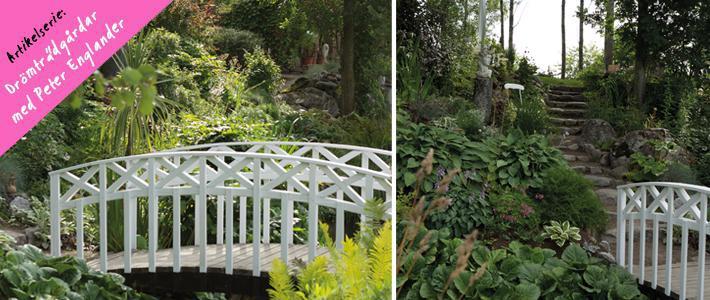 Trädgårdsinspiration bilder - Lilla Madeira