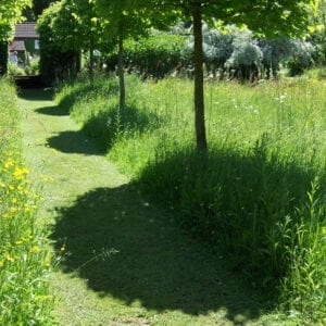 trädgårdsplanering inspiration