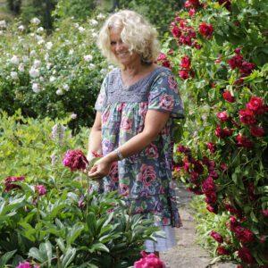 Inredning sommarstuga - Viola bland blommor