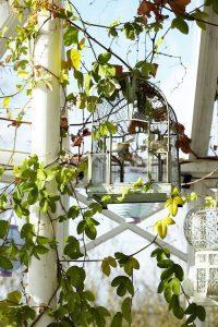 Anne Lundbergs orangeri är ett visuellt spektakel