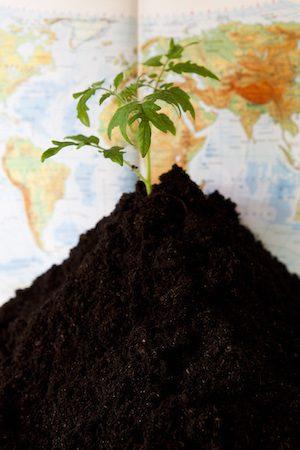 Jordåret. Värdefull odlingsbar jord