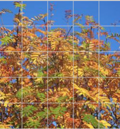 Tiles of Sweden Jj 8580 Autumn Leaves