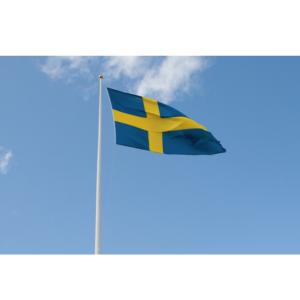 Flaggstångskompaniet 10m Glasfiberflaggstång