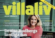 Cover Villaliv nr 4, 2016