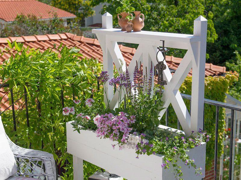 Blomlåda med spaljé - vätter mot trädgården