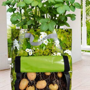 Bakker.com Odlingspåse för potatis 'Urban Gardening'