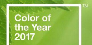 årets färg