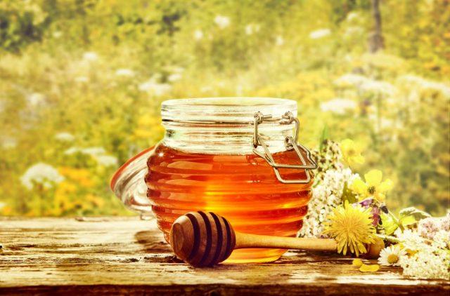 få bort myror i huset med honung