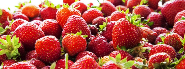 mogna planterade jordgubbar
