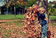 barnanpassad trädgård
