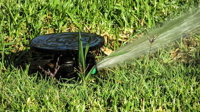 bevattning gräsmatta