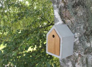 Bygg fågelholk